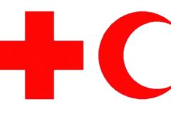Организация Красного Креста Украины, Международная организация Красного Креста и Красного Полумесяца